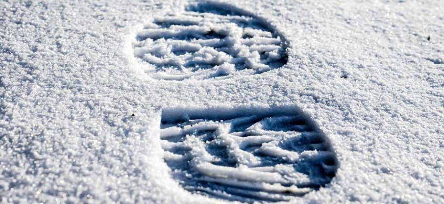 Читать стих Вязь следов на снегу — Валерий Мазманян