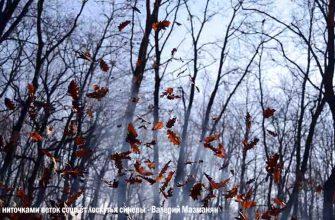 Читать Аллея ниточками веток сошьёт лоскутья синевы - автора Валерия Мазманяна