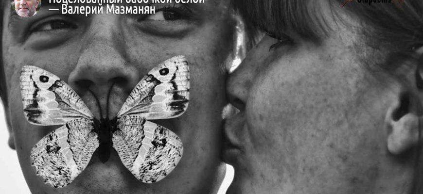Читать стих Поцелованный бабочкой белой Валерий Мазманян